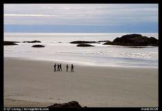 Long Beach. Pacific Rim National Park, Vancouver Island, British Columbia, Canada