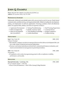 it technical resume - Technical Resumes
