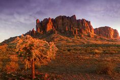 Superstition Mountain, Apache Junction, AZ. // The Lost Dutchman mine is up there somewhere...