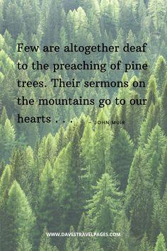 John Muir Quotes – 50 Inspiring Sayings and Quotes by John Muir