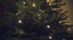 My Photos, Christmas, Xmas, Navidad, Noel, Natal, Kerst