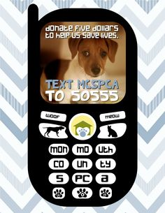 Text MCSPCA to 50555 to donate $5