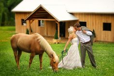 Farm weddings, so romantic at Dewberry Farm.