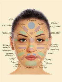 acne face diagram 2001 honda accord parts an interesting that shows what can cause on different drenaggio delle 6 zone della faccia