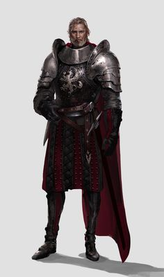 Fantasy Male, Fantasy Armor, High Fantasy, Medieval Fantasy, Fantasy Fighter, Fantasy Wizard, Dungeons And Dragons Characters, Dnd Characters, Fantasy Characters