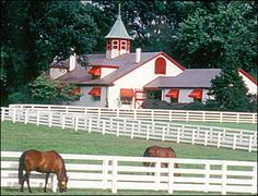 Kentucky horse farm.....someday I will have this.