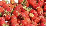 How to Dehydrate, or Dry, STRAWBERRIES!:  A Food Preservation Recipe