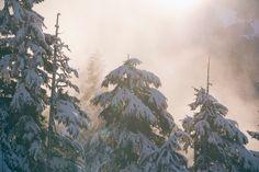 Fotografare la neve o paesaggi invernali innevati