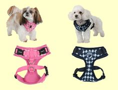 Argyle (winter) harness from Puppia! 2 Colours, Dog Cat, Navy, Winter, Dogs, Pink, Animals, Design, Hale Navy