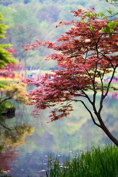 "creepypurpleelves: "" Prince Bay Park in Hangzhou by Qi Zhi """