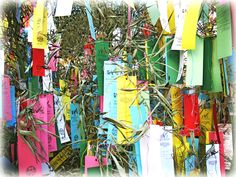 Yesterday was Tanabata in Japan.  Every year on June 7th the deities Orihime and Hikoboshi (represented by the stars Vega and Altair) meet. The two are lovers, separated by the milky way, and are granted one day a year to meet. During this day, many people write their wishes on strips of paper, and hang them on bamboo.  Do you have any wishes you want to make this year?