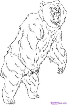 Grizzly Bear Coloring Pages | How to Draw a Grizzly Bear, Step by Step, forest animals, Animals ...