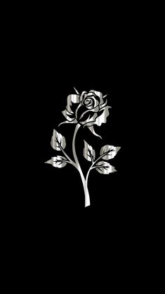 Silver Rose Wallpaper...By Artist Unknown...