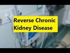 Reverse Chronic Kidney Disease - How to Reverse Kidney Failure