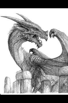 Dragon. Os dragões cascudos, amarelos são o grupo do mal.