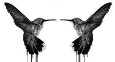 steveswanton:  Humming Bird artwork I did last night..