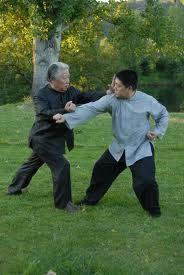 Turn Side and Punch - Demonstrated by Fu Sheng Yuan and Fu Qing Quan #TaiChi #Taijiquan