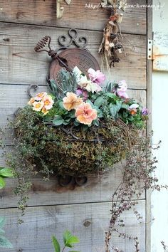 hanging blooms in a wire planter.....
