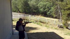 Bird hunting...