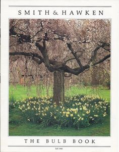 The ORIGINAL Smith & Hawken, circa 1988 :D I wish I had this at my home. Beautiful tree underplanted with daffodils. Gardening Books, Garden Tools, Garden Ideas, Growing Tree, Trees And Shrubs, Daffodils, Perennials, The Originals, Planting