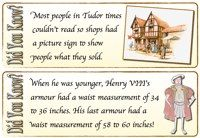 Tudors - Did You Know? Cards