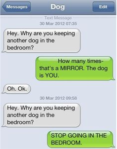 Stop going in the bedroom #dog texts