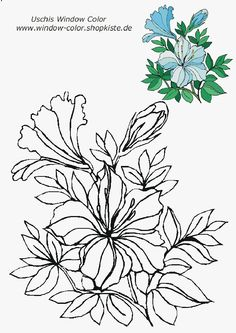 Blumen-Vorlagen 1 Flower Sketch Images, Flower Sketches, Watercolor Drawing, Watercolor Cards, Autumn Painting, Fall Paintings, Tole Painting Patterns, Flower Coloring Pages, Sculpture Painting