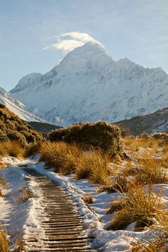 Snow covered boardwalk on the Hooker Valley track leading to Hooker Lake at Mt Cook / Aoraki