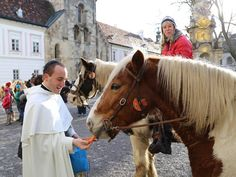 Stift Heiligenkreuz  Horses blessing and distribution of the peace light of Bethlehem. Here's the video: https://www.youtube.com/watch?v=0nTLKX1Y70c