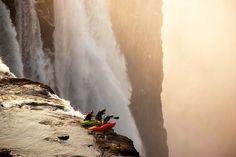 Extreme Kayaking @ Victoria Falls  by Desre Tate
