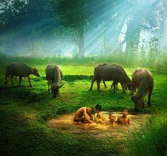 Amazing photography by Rarindra Prakarsa