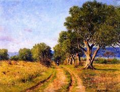 Mediterranean Olive Trees Coast