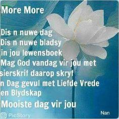 Afrikaans Morning Blessings, Good Morning Wishes, Day Wishes, Good Morning Quotes, Home Remedies For Gout, Lekker Dag, Evening Greetings, Afrikaanse Quotes, Goeie Nag