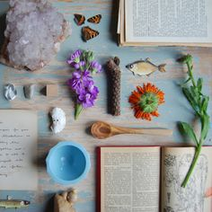 flowers / natural / soft / findings / books / background
