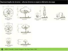 Representações gráficas para paisagismo: algumas sugestões | Helena Degreas