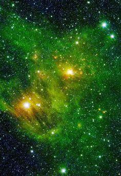 Cygnus nebula