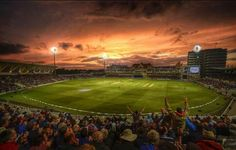 Cricket sunset