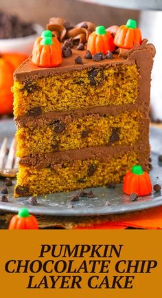 This Pumpkin Chocolate Chip Layer Cake is a tender, moist pumpkin cake with chocolate chips and a smooth chocolate frosting made with melted chocolate! Perfect for fall and the holidays! Best Chocolate Desserts, Chocolate Chip Cake, Melted Chocolate, Pumpkin Chocolate Chips, Decadent Chocolate, Chocolate Frosting, Best Cake Recipes, Dessert Recipes, Basic Butter Cookies Recipe