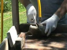 Soapstone carving demo