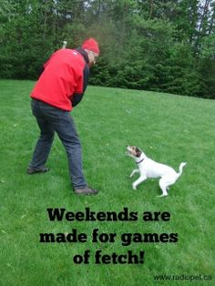 Weekends are all about fun and games - especially for our dogs!   #dogs #canine #pets #quotes #animals  #radiopet #dogfencing  Created by:  www.radiopet.ca