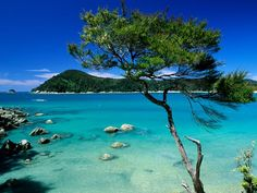 Abel Tasman National Park - New Zealand, how absolutely flawless does this place look? wow