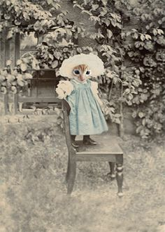 Mary Jane - Vintage Cat Print - Anthropomorphic - Altered Photo - Photo Collage Art - Whimsical Art - Baby Animal - from AnimalFancy on Etsy. Cat People, Animal Heads, Vintage Cat, Whimsical Art, Crazy Cats, Cool Cats, Pet Portraits, Cats And Kittens, Kitty Cats