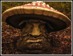 Mushroom Head by ~FallOfBabylon . Located at Druidstone Park, Canterbury- example of one of many Fey creatures lazing around.