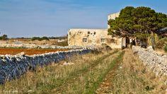 Masseria salentina  Il Salento non è solo mare... Nelle campagne si incontrano tantissime masserie abbandonate, ormai prede di turisti anglosassoni che le acquistano per pochi soldi e le ristrutturano.