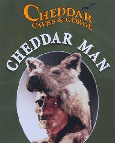 cheddar man | The 2009 Bing trip