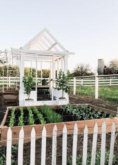 DIY Greenhouse Garden Shed - Liz Marie Blog