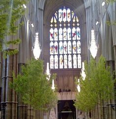 "Trees from the Royal Wedding of William and Kate at Westminster Abbey. Check out the ""Home"" blog for more details about the wedding and many more beautiful photos of Westminster Abbey that were not shown during the ceremony too."