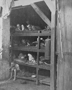 Discovery of Concentration Camps and the Holocaust