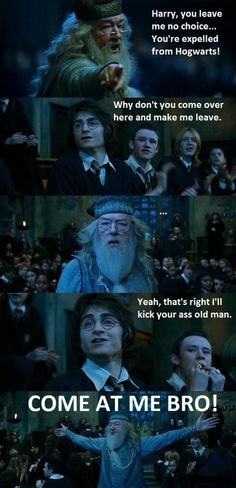 Best Funny Harry Potter thing Ever.