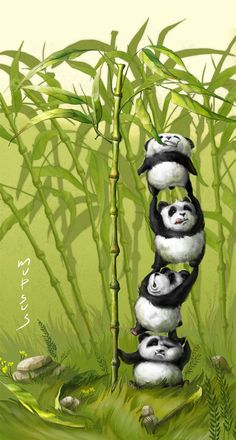 Green bamboo  When pandas are hungry  by ~VeronikaD